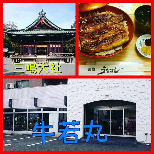 今年最後の、出張ですなので、早めに現地入りして三嶋大社で参拝して、關散歩で、うなよしまで歩いて、昼食の鰻丼を食べて、気合を入れて、講習会をさせて頂きました~ 牛若丸のスタッフさんのに、いつも力を貰います素敵な出会いをありがとうございますカットって、楽しいですね~ #静岡県#三島#牛若丸#ランウェイズ#きくや美粧堂#三嶋大社#うなよし#今年最後#カット講習会#ありがとうございました